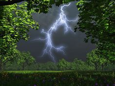 ♥.•:*´¨`*:•♥what a beautiful picture♥.•:*´¨`*:•♥ ultimate-nature-clouds-forest-jungle-lightning-nature-trees- (2560×1920)