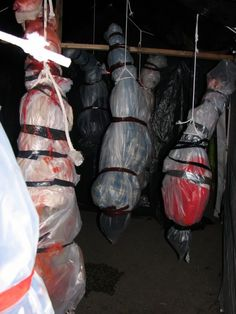 diy haunted house ideas | Budget Bodies - HauntForum - great for entryway!!