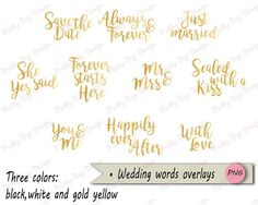 Wedding Words Overlays Black White and Gold by PrettyDigiDesign
