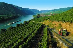 Austria's Wachau Valley