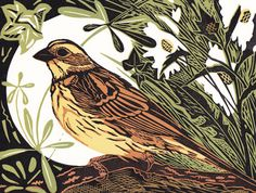 Yellowhammer - linocut - Pam Grimmond