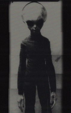 Is Skinny Bob real? Is this a Roswell survivor and is he a genuine live alien? See also on YT amazing footage.
