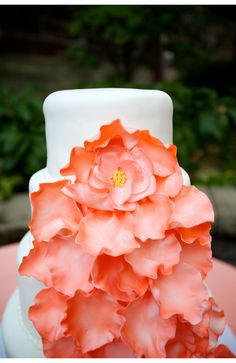 Coral cake with large flowers