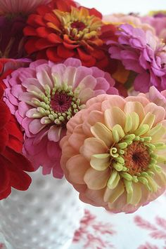 Great photo of beautiful zinnias, and a very cool vintage hobnail vase! Types Of Flowers, Fresh Flowers, Beautiful Flowers, Pink Flowers, Ranunculus Flowers, Flower Vases, Exotic Flowers, Dream Garden, Beautiful Gardens