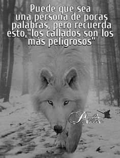 Positive Phrases, Motivational Phrases, Life Lesson Quotes, Life Quotes, Top Disney Movies, Some Beautiful Quotes, Latinas Quotes, Spanish Inspirational Quotes, Wolf Life