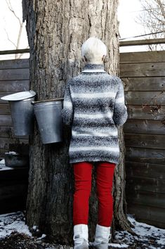 My Ultimate guide to making Maple Syrup including how to tap a tree, which trees to tap and how to turn that sap into syrup! Homemade Maple Syrup, Sugar Bush, Activities For Girls, Backyard Farming, Maple Tree, Need To Know, Garden Crafts, Garden Tips, Sugaring