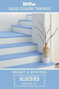 All you need is a new coat of paint to create a bright and welcoming atmosphere in your home. Use BEHR® Paint in Bluebird, from the 2020 Color Trends Palette. It beautifully complements white accents and adds a touch of color to your interior design. Click below to learn more.