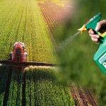 Πώς αφαιρώ τα φυτοφάρμακα από φρούτα και λαχανικά; - OlaDeka Soccer, Futbol, European Football, European Soccer, Football, Soccer Ball