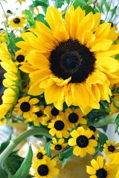 Love Sunflowers! This is a gorgeous arrangement | Backyards Click