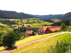Blick ins Tal #Baiersbronn #Schwarzwald