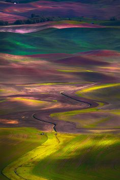 Tapestry Of Colors In The Palouse. The Palouse which is one of the most stunning places to visit in the Spring. The Palouse is located in Eastern Washington and for a few weeks each year everything goes vibrant especially the greens. All Nature, Amazing Nature, Science Nature, Cool Pictures, Cool Photos, Beautiful Pictures, Inspiring Pictures, Guys Photos, Beautiful World