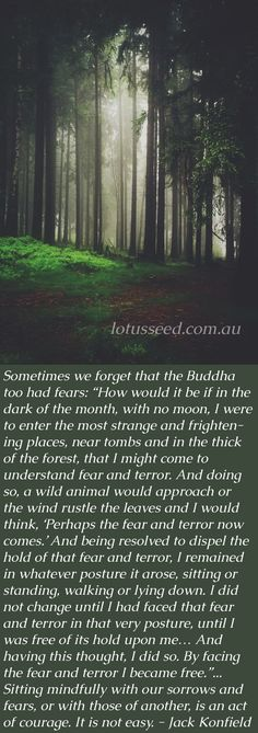 Maybe Buddha too had fears - Even the worst losses become workable over time - Jack Kornfield Buddhist Zen quotes by lotusseed.com.au