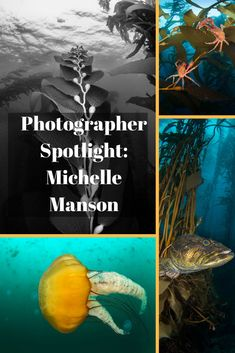 In an ongoing series, we'll chat with prominent and up-and-coming underwater photographers. Today we visit with Michelle Manson. Underwater Photographer, Underwater Photos, Underwater World, Film Photography, Street Photography, Landscape Photography, Wedding Photography, Fashion Photography, Camera Life
