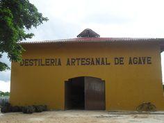 Mayapan - Destileria Artesanal De Agave - Valladolid