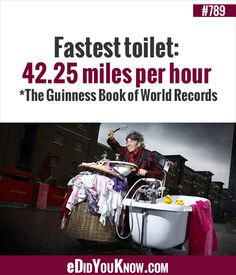 Funny Animal Pictures, Funny Animals, Miles Per Hour, Guinness Book, World Records, Lifehacks, Did You Know, Fun Facts, Toilet