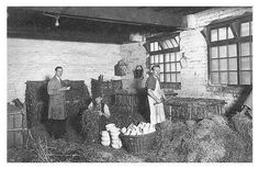 Photo - Packing department at a Stoke on Trent factory.  The china was packed in straw for shipping.