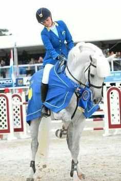Now that is a Barbie horse in real life. Cute Horses, Pretty Horses, Horse Love, Horse Girl, Beautiful Horses, Gray Horse, Horse Photos, Horse Pictures, Equestrian Outfits