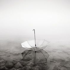 umbrella. upside down. floating on water. puddle.   RP » Still Life