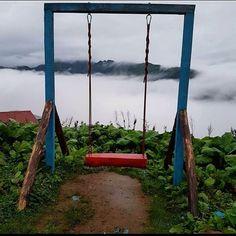 Görüntünün olası içeriği: gökyüzü, bulut, bitki, ağaç, açık hava ve doğa