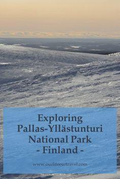 Pallas-Yllästunturi National Park, Lapland, Finland: cross country skiing