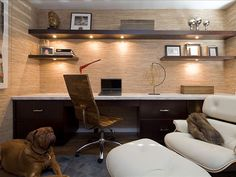 Small space - big appeal. I'll take the dog too!