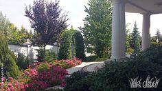 Inner Garden Garden, Plants, Garten, Gardens, Planters, Tuin, Plant, Planting, Yard