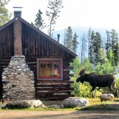 cabin in the woods / with a moose visitor - http://www.homedecoras.net/cabin-in-the-woods-with-a-moose-visitor