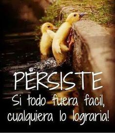 Persistencia (pineado por @PabloCoraje) #motivacion #sonrie #felicidad #frases #motivacionales #Citas #Frases