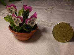 how to: miniature pansies