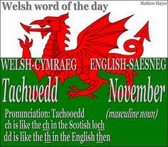 #Welsh word of the day: Tachwedd/ #November