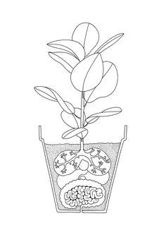 Mrzyk & Moriceau. (Illustration, Design)