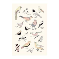 IKEA - BILD, Poster, Motif created by Clara Wells.You can personalize your home with artwork that expresses your style.
