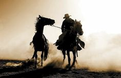 Cowboys rock. Horses rock more.