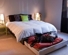 DIY Platform Bed With A Roll Out Dog Bed | You'll be so happy when you and your dog can enjoy sleeping in your new DIY platform bed with doggy trundle.