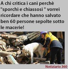 Terremoto in Italia - Agosto 2016