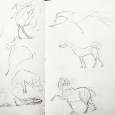 DHD 032: Sketch Process Didn't have time last night or tonight to do a nice new drawing… so instead I present you with my sketches for previous DHDs! Can you recognise any of them? 😏 I sketch out 99% of my horses in paper first. Paper is awesome.