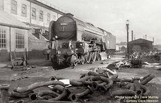 Class No 60116 Hal o' the Wynd Electric Locomotive, Diesel Locomotive, Steam Locomotive, Time Travel Machine, Abandoned Train, Steam Railway, Old Trains, Steam Engine, Vintage Travel
