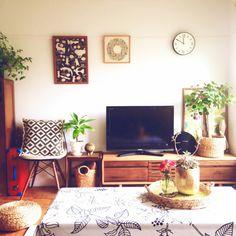 幸せを引き寄せる♡「ガジュマル」を、お部屋に飾ってみよう♪ | RoomClipMag