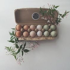 We were discussing chicken and duck eggs in the office this morning. apparently duck eggs are good for baking? Color Of The Week, Duck Eggs, Chicken Eggs, Different Colors, Colours, Blog, Kitchen Stuff, Passion, Design
