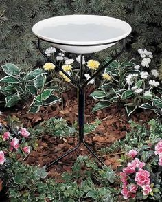 Bird Bath With Metal Stand