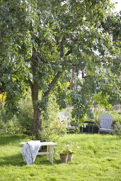 Country Life, Country Living, Apple Garden, Swedish Cottage, Wild Strawberries, Green Life, Simply Beautiful, Garden Plants, Summer Time