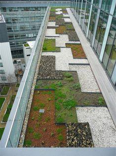 Fotografías de terrazas y techos verdes que tienen como finalidad servir de…