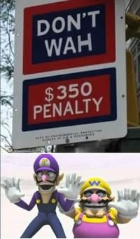 Wario may rhyme with Mario, but Waluigi clearly wears the brotherly pants in this relationship.