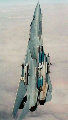 F jims plane. Military Jets, Military Aircraft, Air Fighter, Fighter Jets, Tomcat F14, Fixed Wing Aircraft, Flying Vehicles, Fighter Aircraft, Aviation Art