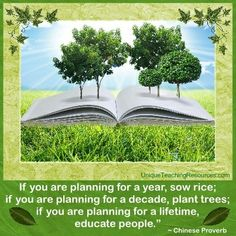 """""""If you are planning for a year, sow rice; if you are planning for a decade, plant trees; if you are planning for a lifetime, educate people.""""  ~ Chinese Proverb  (Download a FREE one page poster for this quote on: http://www.uniqueteachingresources.com/Quotes-About-Education.html)"""