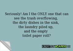 Seriously! Am I the ONLY one that can see the trash overflowing,  the dirty dishes in the sink,  the laundry piled up,  and the empty  toilet paper roll?