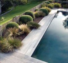 If you are working with the best backyard pool landscaping ideas there are lot of choices. You need to look into your budget for backyard landscaping ideas Swimming Pool Landscaping, Pool Fence, Swimming Pool Designs, Landscaping Around Pool, Outdoor Pool, Outdoor Gardens, Pool Cabana, Coastal Gardens, Plunge Pool