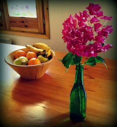 Les flors del poble ens ambienten el refugi