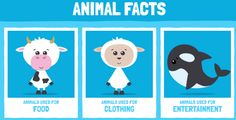 Use these PETA resources for every grade level! #teachkindness #humaneeducation #saveanimals #lessonplans