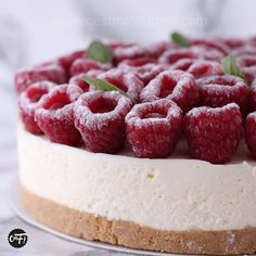 : The raspberry basil cheesecake – The most beautiful recipes Cheesecake Mousse Recipe, Chocolate Mousse Cheesecake, Homemade Cheesecake, Peanut Butter Cheesecake, Caramel Cheesecake, Cheesecake Bites, Raspberry Cheesecake, Cheesecake Recipes, Cheesecake Cake